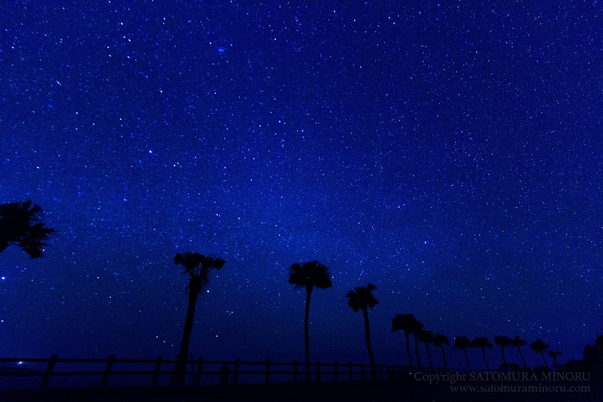 大浜海浜公園の星空